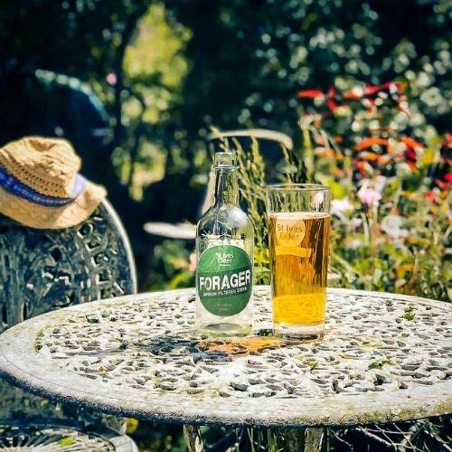 st-ives-cider-summer